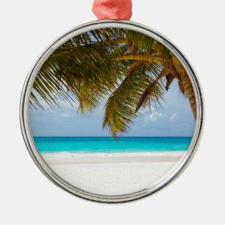 Ornement Rond Argenté Palmier vert sur la plage pendant la journée