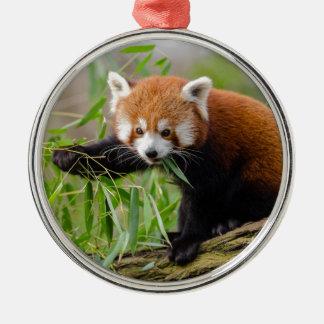 Ornement Rond Argenté Panda rouge mangeant la feuille verte