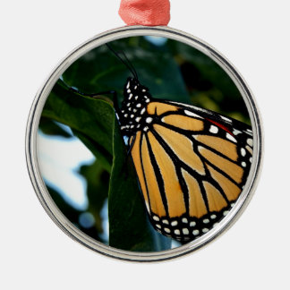 Ornement Rond Argenté Papillon de monarque dans les lilas