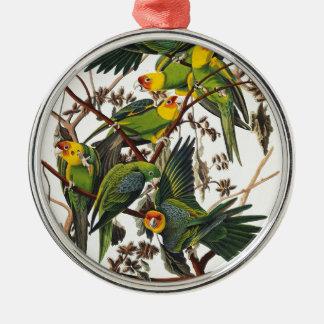 Ornement Rond Argenté Perroquet de la Caroline - John James Audubon