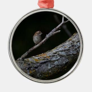 Ornement Rond Argenté Petit oiseau