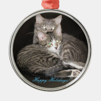Ornement Rond Argenté Photo de chatons