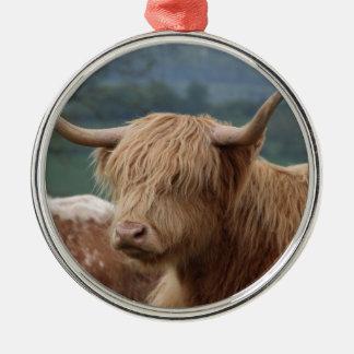 Ornement Rond Argenté portrait des bétail des montagnes