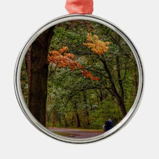 Ornement Rond Argenté Promenade d'automne
