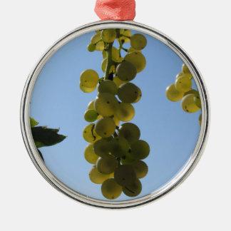 Ornement Rond Argenté Raisins blancs sur la vigne contre le ciel bleu