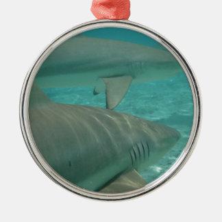 Ornement Rond Argenté shark