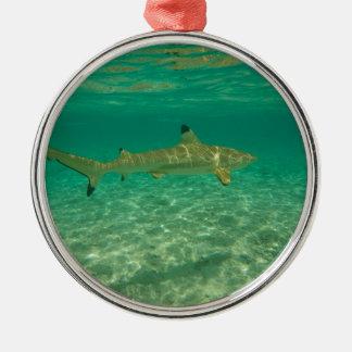 Ornement Rond Argenté Shark in bora bora