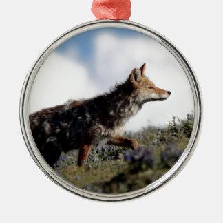 Ornement Rond Argenté Un coyote marche en parc national de Yellowstone,