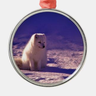 Ornement Rond Argenté Un Fox arctique en Norvège