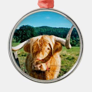 Ornement Rond Argenté Vache des montagnes