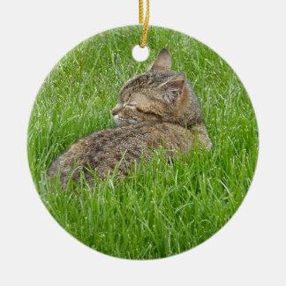 Ornement Rond En Céramique A Nap in the Grass