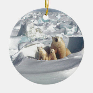 Ornement Rond En Céramique Ajoutez le SLOGAN pour sauver la glace arctique de