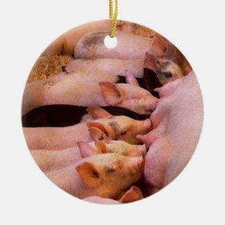 Ornement Rond En Céramique Animal - porc - nourriture de confort