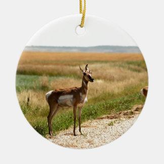Ornement Rond En Céramique Antilope de Pronghorn de prairie