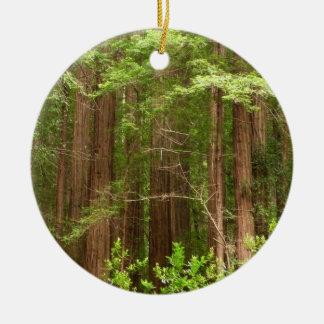 Ornement Rond En Céramique Arbres de séquoia au monument national en bois de