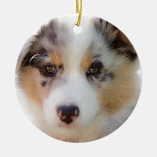 Ornement Rond En Céramique Australian shepherd puppy