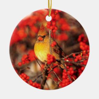 Ornement Rond En Céramique Baies femelles et rouges cardinales, IL