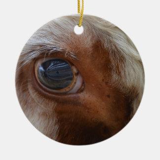 Ornement Rond En Céramique Beauté dans l'oeil de la vache à spectateur