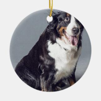 Ornement Rond En Céramique chien