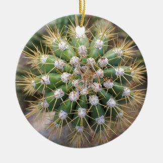 Ornement Rond En Céramique Dessus de cactus