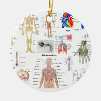 Ornement Rond En Céramique Diagrammes médicaux d'anatomie humaine