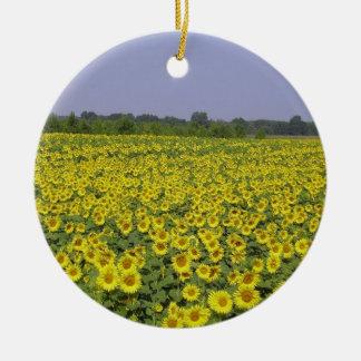 Ornement Rond En Céramique Field of sunflower - Champ de tournesol (01)