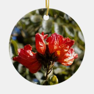 Ornement Rond En Céramique Fleurs d'un tuliptree africain