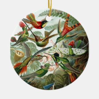 Ornement Rond En Céramique Formes 1899 d'art d'espèces de colibri de copie de