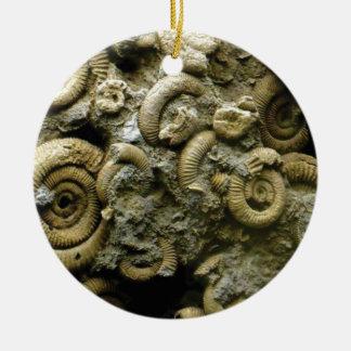 Ornement Rond En Céramique fossiles incorporés d'escargots