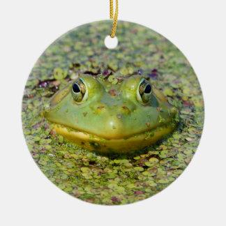 Ornement Rond En Céramique Grenouille verte en lenticule, Canada
