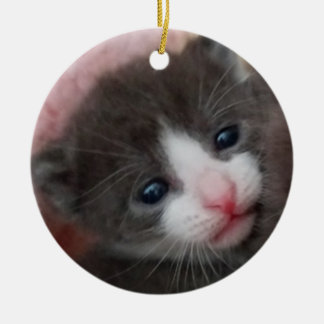 Ornement Rond En Céramique Gris et blanc d'ornement de chaton de bébé