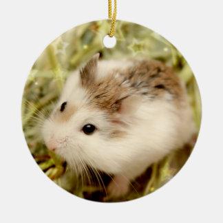 Ornement Rond En Céramique Hammyville - hamsters mignons