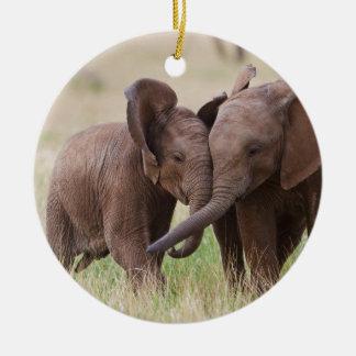 Ornement Rond En Céramique Jeune jeu d'éléphants africains