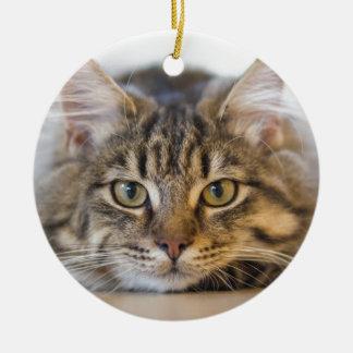 Ornement Rond En Céramique Joli Kitty vous regardant