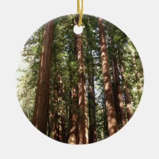 Ornement Rond En Céramique Jusqu'aux séquoias II au monument national en bois