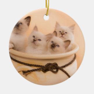 Ornement Rond En Céramique kitten in a flower pot