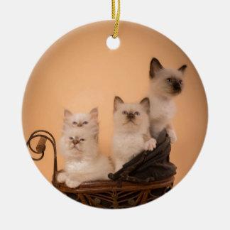 Ornement Rond En Céramique kitten in a stroller