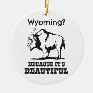 Ornement Rond En Céramique Le Wyoming ? Puisqu'il est beau