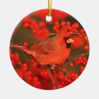 Ornement Rond En Céramique Mâle cardinal du nord rouge, IL