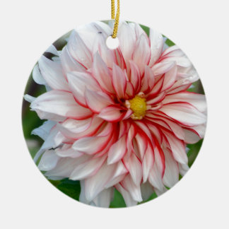 Ornement Rond En Céramique Menthe poivrée florale