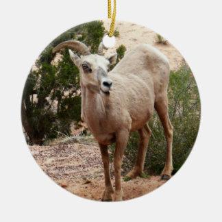 Ornement Rond En Céramique Mouflons d'Amérique drôles au parc national de