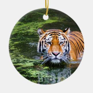 Ornement Rond En Céramique Natation de tigre