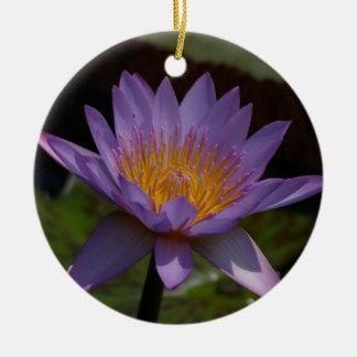 Ornement Rond En Céramique Nénuphar pourpre de Lotus