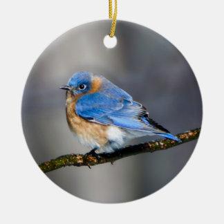 Ornement Rond En Céramique Oiseau bleu oriental sur l'ornement de membre