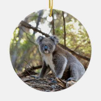 Ornement Rond En Céramique Ours de koala gris et blanc