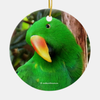 """Ornement Rond En Céramique """"Perroquet d'Eclectus de l'orateur vert"""""""