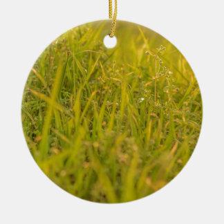 Ornement Rond En Céramique Photo de détail d'herbe