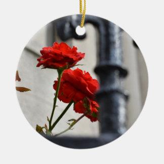 Ornement Rond En Céramique Photographie de New York de porte de jardin