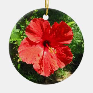 Ornement Rond En Céramique Photographie rouge de fleur de ketmie d'Hawaï