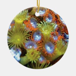 Ornement Rond En Céramique plantes d'animal de mer